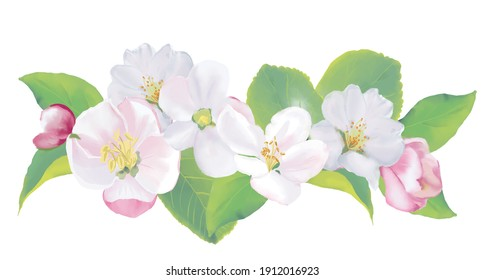 Spring Apple Blooming Branch Boarder Wreath. Watercolor illustration. High resolution. 300 dpi