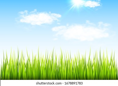 Spring background with fresh green grass and blue sky with clouds.
