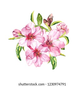 Spring blossom - bouquet of pink sakura or cherry flowers. Springtime floral watercolour