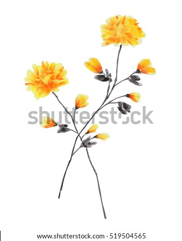Spring branches rose tree yellow flowers stock illustration spring branches of rose tree with yellow flowers on a white background isolated watercolor mightylinksfo