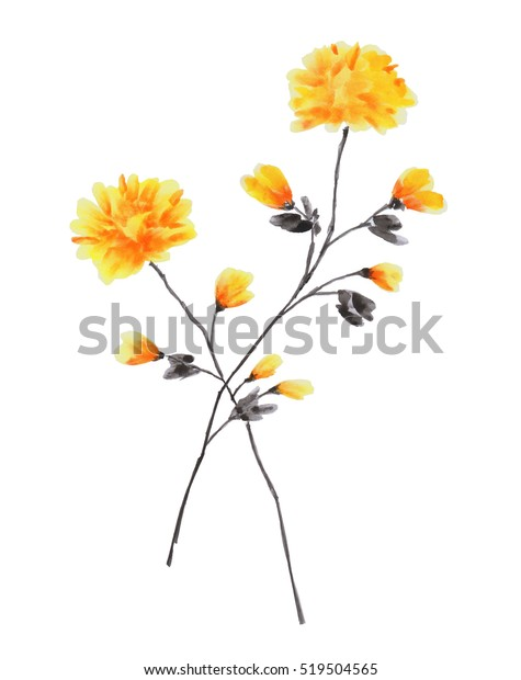 Spring branches of rose tree with yellow flowers on a white background. Isolated. Watercolor