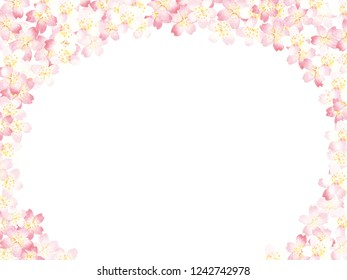 Spring Cherry blossoms watercolor painting on white background