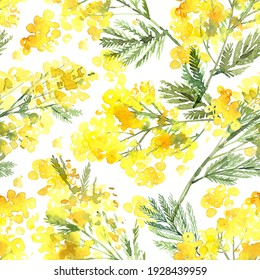 Spring floral pattern with branches of bright yellow mimosa painted in watercolor. Hand-drawn delicate floral background in sketch botany style. Texture for fabric, wrapping paper, postcards.