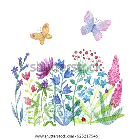 Spring Flowers Butterflies Beautiful Hand Painted Stock Illustration