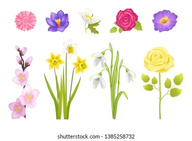 Spring flowers set of rose and gerbera leaves narcissus yellow color glass decoration poster snowdrops raster illustration isolated on white