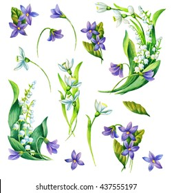 Spring flowers set: snowdrop, viola, may-lily  on white background.