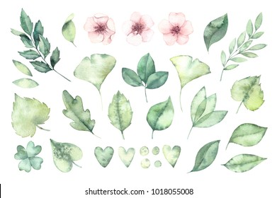 Spring foliage. Watercolor illustration. Botanical collection of green leaves, branches and herbs. Perfect for wedding invitations, greeting cards, posters, prints, packing etc
