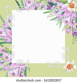 spring frame with watercolor lilac crocuses.