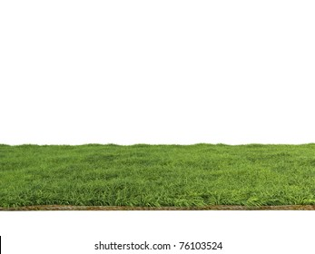 spring green grass isolated on white background