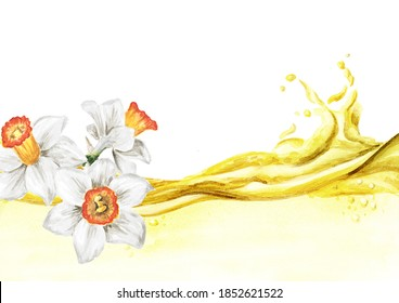 Spring Narcissus flower essential oil wave. Hand drawn watercolor illustration, isolated on white background .tif