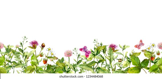 Spring pink flowers, summer wild grass, field herbs, butterflies. Seamless floral horizontal border. Watercolor repeated frame