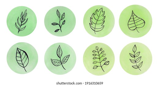 Spring plants circle collection. Watercolor design elements isolated on white background
