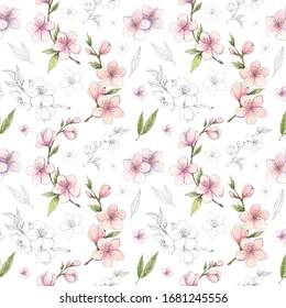 Sakura de primavera, cerezo, color de agua de almendras y tintas de plumilla sin fisuras botánicas. Color rosa con detalles monocromáticos fondo floral para papel pintado, papel para regalo, diseño textil.