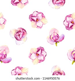 Spring seamless background with watercolor magnolia. Floral purple pattern with realistic flowers on white background for your design and decor.