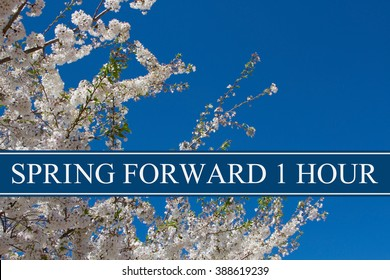 Spring Time Change, A tree in full bloom with blue sky and text Spring Forward 1 Hour