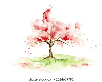 Spring tree / Flowering cherry, watercolor illustration, sketch