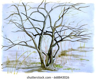 Spring tree without leaves on a blue background, hand drawing.