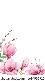 Spring watercolor Flowers of Magnolia. Handpaint. White background