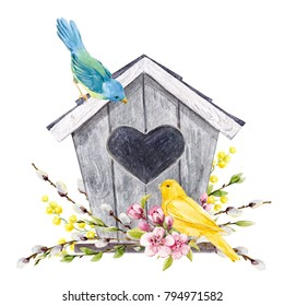 Spring watercolor illustration of a birdhouse with birds tit, yellow Canary, willow branches, cherry blossoms, Easter illustration. flowers Mimosa