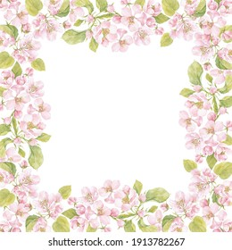 Square watercolor frame with blooming apple tree branches on white. Illustration with place for text, can be used creating card, menu or invitation card.