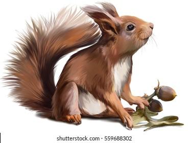 Squirrel watercolor painter