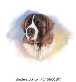 Watchdog Images, Stock Photos & Vectors | Shutterstock