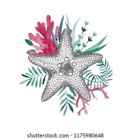 Starfish, sea, watercolor