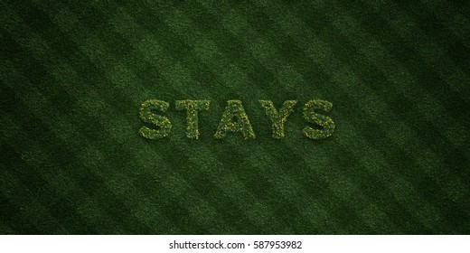 STAYS - fresh Grass letters with flowers and dandelions - 3D rendered royalty free stock image. Can be used for online banner ads and direct mailers.