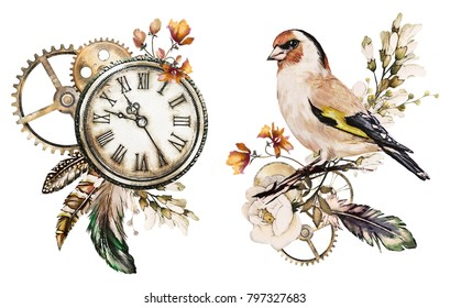 steam punk watercolor  Illustration with roses, clock, clockwork, feathers, jewelry, bird, Flowers.  isolated on white background. Vintage print.