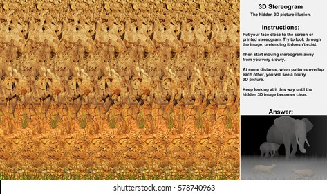 Stereogram illusion with elephants and lions in hidden 3D picture
