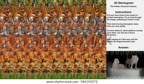 Stereogram illusion with two tigers in hidden 3D picture