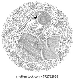Coloring Book For Adult Outline Drawing Page Stock Line