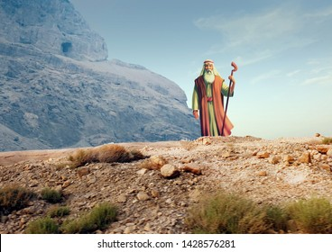 The Story of Moses - The Old Testament