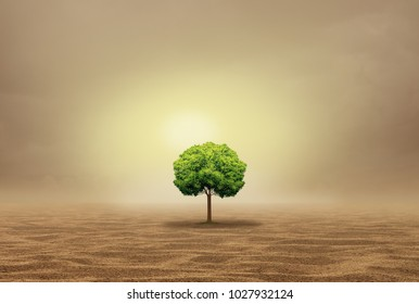 Stranded and helpless as an oasis concept as a vulnerable single tree in a hot arid desert as a withdrawn metaphor in a 3D illustration style.