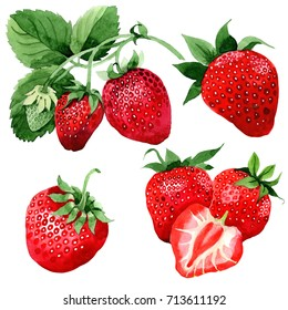 Strawberry healthy food in a watercolor style isolated. Full name of the fruit: strawberry. Aquarelle wild fruit for background, texture, wrapper pattern or menu.