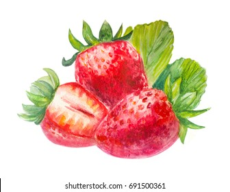 Strawberry watercolor. Berry.