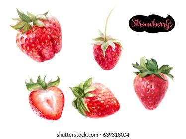 Strawberry watercolor set illustration isolated on white background.
