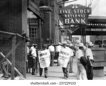 Strike of 700 members of the Stock Handlers Union They unloaded and fed the cattle in the Chicago Stock Yards July 4.
