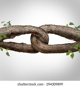 Strong chain concept connected as two different tree trunks tied and linked together as an unbreakable chain as a trust and faith metaphor for trusted partner for support and strength.