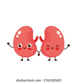 Strong cute healthy happy kidneys character. flat cartoon illustration icon design. Isolated on white background. Couple of healthy human kidney concept