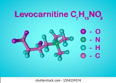 Structural chemical formula and molecular model of levocarnitine, L-carnitine, vitamin B11. Medical background. Scientific background. 3d illustration