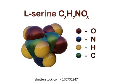Structural chemical formula and molecular model of l-serine, the nonessential amino acid derived from glycine. It presents on spider silk proteins. Scientific background. 3d illustration