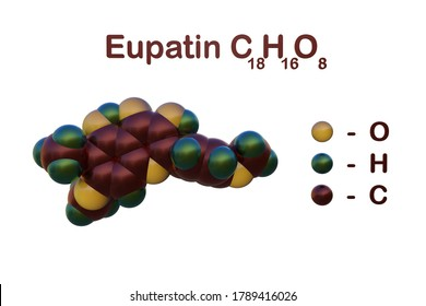 Structural chemical formula and molecular model ofeupatin, a type of flavonoids, present in several species. It has been known to possess anti-cancer and anti-allergy activity. 3d illustration