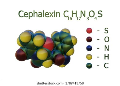 Structural chemical formula and space-filling molecular model of cephalexin, a beta-lactam, first-generation cephalosporin antibiotic with bactericidal activity. 3d illustration
