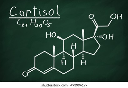 Structural model of Cortisol on the blackboard.