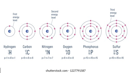 Structure of an atom. Hydrogen. Carbon. Nitrogen. Oxigen. Phosphorus. Sulfur Atomic Model diagram