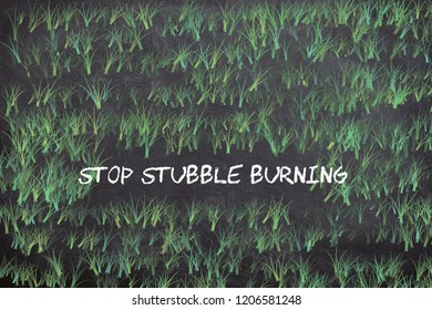 Stubble burning is the setting fire of the straw stubble that remains after wheat and other grains have been harvested.which very rampant in north India.