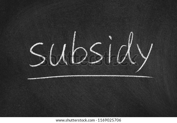 subsidy concept word on a blackboard background