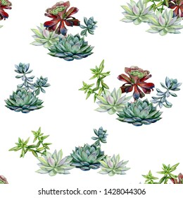 Succulents seamless pattern, echeveria illustration, botanical painting of dudleya and zwartkop. Stone rose. Sempervivum art. Watercolor elements for design of invitations, movie posters, fabrics.