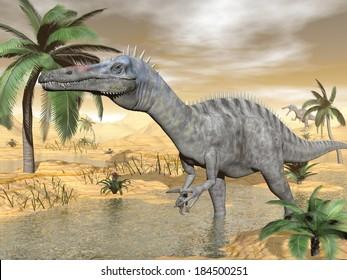 Suchomimus dinosaur walking to the water in desert landscape by brown day